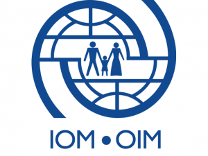 IOM condemns violence against Soweto foreign nationals