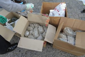 OVER ONE MILLION WORTH OF DRUGS RECOVERED