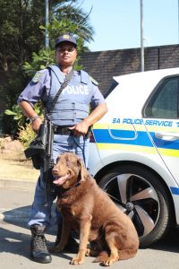 Read more about the article SAPS PAYS TRIBUTE TO WOMEN IN LAW ENFORCEMENT: MEET WARRANT OFFICER ELLIS, A K-9 NARCOTICS HANDLER